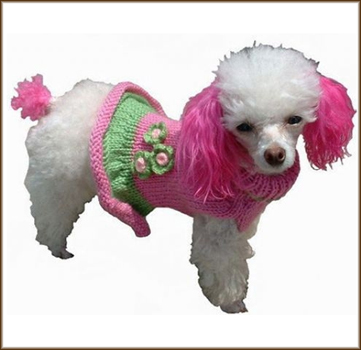 girly-dog-sweater-lg1.jpg